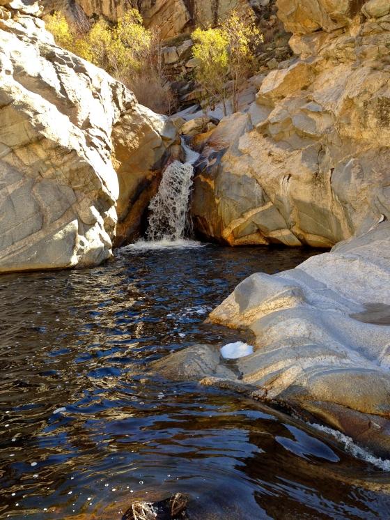 secret pools, Tucson